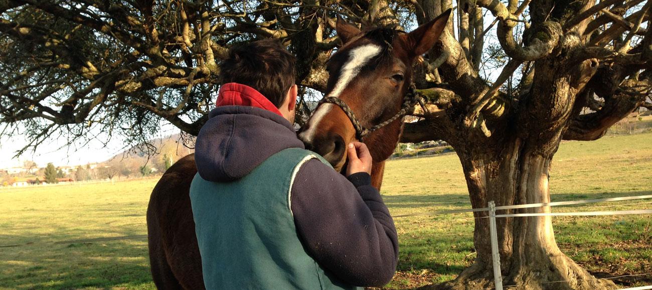Equitation Adaptee Claire Rondet Les Ateliers de la Cavale
